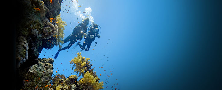 Scuba diving travel insurance - World First