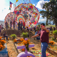 Travel in search of elaborate kite displays