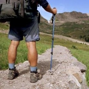 Backpackers not changing travel routes