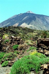 North Tenerife to get cash boost