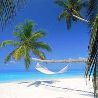 Maldives is one of the most popular honeymoon destinations, a survey found