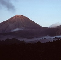 New Zealand affected by volcanic disruption