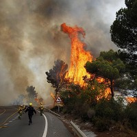 Firefighters tackle the fires (AP)