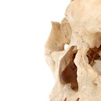 An ancient skeleton may help with cancer research, scientists say