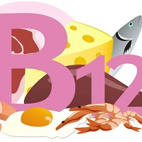 Vitamin B12 is found in fish, meat and dairy products