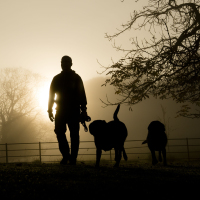 Older dog walkers are more active during winter, says study