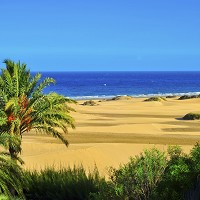 The Natural Reserve of Maspalomas Dunes in Gran Canaria