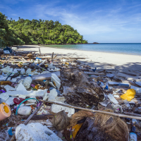 Bali's tourist trade affected by mounting rubbish on beaches