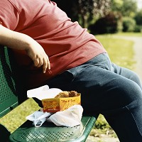 Bad diets are the main cause of obesity, researchers say