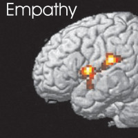 Genes have more to do with empathy than we think