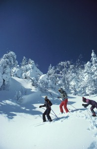 Japan 'rising in popularity' with skiers